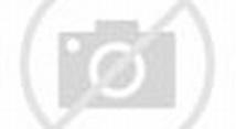 香港旗的墨線圖