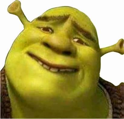 Shrek Meme Stickers Sticker Emoji Popular Sdlg