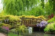 Isabella Plantation offers a breathtaking retreat - Grand ...