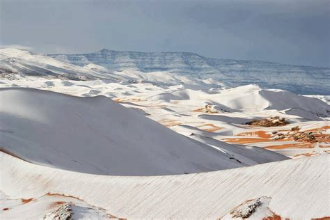 rare snow covers  sahara desert  algeria