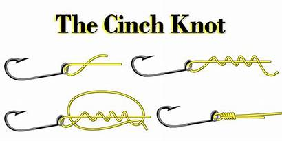 Knot Cinch Tie Fishing Panama Inshore Step