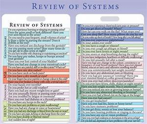 Review Of Systems Example With Complete Guide  With Images