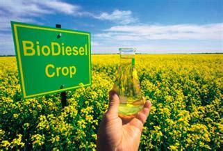 Альтернативные виды топлива как мера экономии и защиты экосистемы