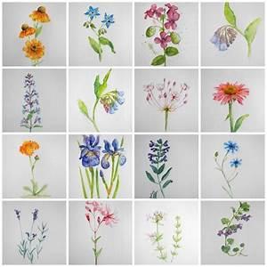 Aquarell Malen Blumen : blumen aquarelle arrangieren wer die wahl hat hat die ~ Articles-book.com Haus und Dekorationen