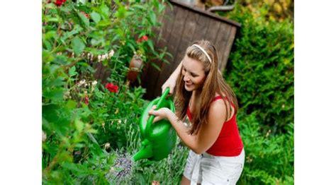 tips merawat tanaman pekarangan rumah lifestyle