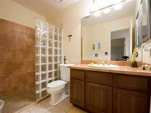 Small Bathroom Remodel On A Budget Home Design Ideas