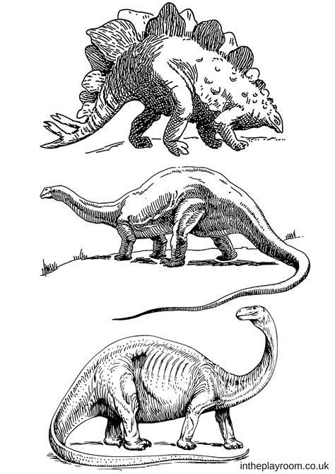 dinosaur colouring pages   playroom