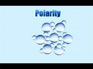 Water and Polarity 3D Animation - YouTube