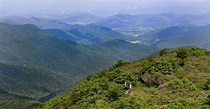 Blue Ridge Parkway closes for public safety ahead of ...