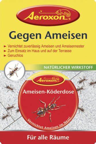 Hilfe Gegen Mücken In Der Wohnung by Hilfe Gegen Ameisen In Der Wohnung Hilft Essigreiniger