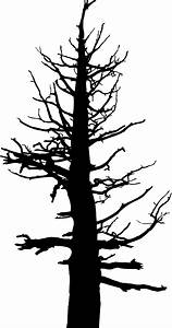 Scary Dead Tree Coloring Pages Sketch Coloring Page