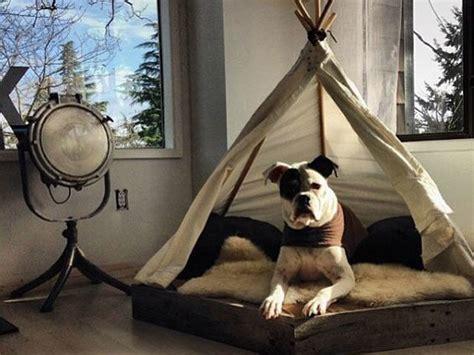 hundebett selber bauen  gemuetliche ideen fuer ihren vierbeiner heimwerkertricksnet
