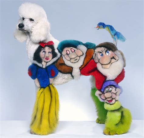 weird world  competitive dog grooming