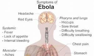 Online Homeopathic Treatment Consultation | Ebola Virus ...
