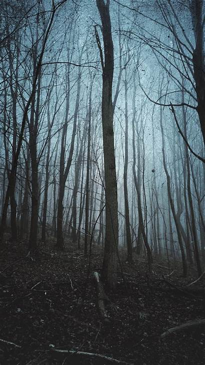 Vertical Landscape Portrait Pantalla Fondos Retrato Paisaje
