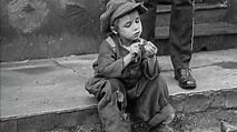 The Kid (6 February 1921) | Chaplin: Film by Film