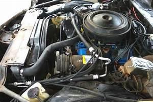 Z28 Survivor  1979 Chevrolet Camaro Z28