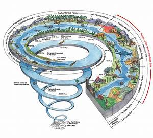 Earth History And The Jurassic Coast