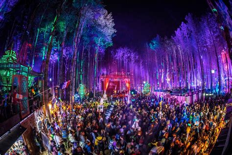 forest electric festival weekend electronic awards fan lineups revealed midwest reveals xlive bassnectar