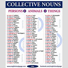 Tell Me 50 Examples Of Collective Nouns  English  Nouns  466190 Meritnationcom