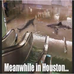 Houston Weather Meme
