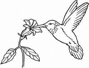 Bird Coloring Pages (12) - Coloring Kids