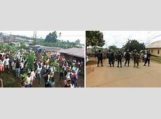 IRIN Cameroon's descent into crisis the long history of