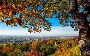 Kostenlose Bilder Herbst : download hintergrundbilder herbst kostenlos 4070 full hd hintergrundbilder desktop ~ Yasmunasinghe.com Haus und Dekorationen