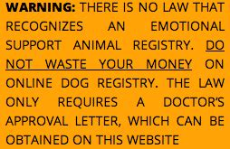 how to register a cat as an emotional support animal all you need to about emotional support dogs