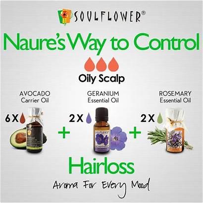Skin Soulflower Biz Natural Scalp Care Remedies