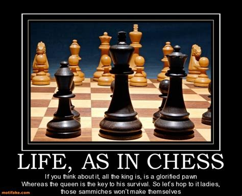 Chess Memes - chess picture jokes chess forums page 2 chess com