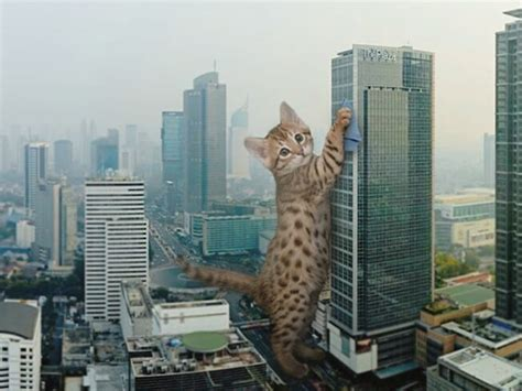 giant cats lived