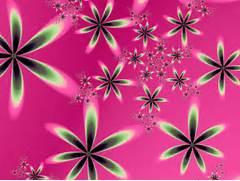 Pink  Color  images Pi...