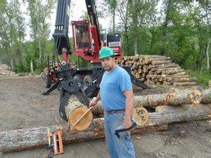 timber resource group log yards sawmills timber