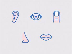 Five Senses Icon Set by Kyle Adams - Dribbble
