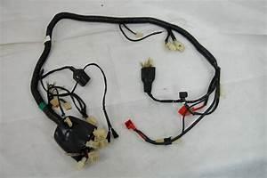 Wiring Harness Assy  Xy300ste  Scooterpower Eu