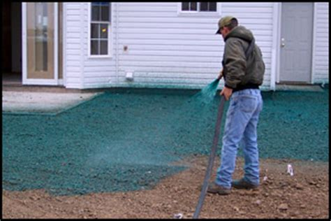 hydro lawn seed hydroseeding