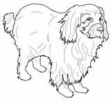 Newfoundland Coloring Dog Pages Dogs Printable Colouring Super Supercoloring Pattern Patterns Animals Sheets Getcolorings Drawing Coloringbase Visit Crafts sketch template