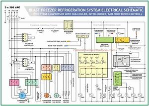Chiller Wiring Diagram : electrical schematic cold storage climate chamber ~ A.2002-acura-tl-radio.info Haus und Dekorationen