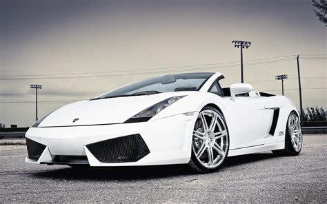 Lamborghini White Wallpapers Hd Wallpaperwiki