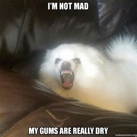 Im Mad At You Meme - i m not mad my gums are really dry make a meme