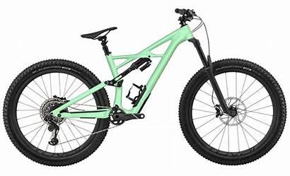 Specialized Enduro Custom Stumpjumper Fsr Carbon Bike