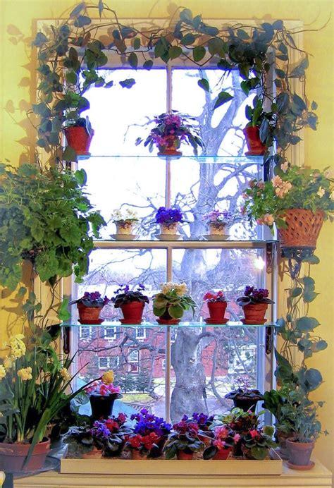 Window Sill Garden Vegetables by Best 25 Indoor Window Garden Ideas On