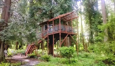 Tree House Airbnb These 10 Awesome Airbnb Treehouses Are Yours To Rent This