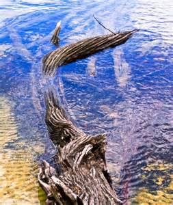 Franklin Gordon Wild Rivers National Park Location