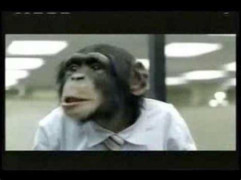 career builder monkeys super bowl xl commercial youtube