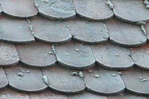 Eternit Asbest Erkennen : eternitplatten mit asbest sicher und umweltgerecht entsorgen ~ Orissabook.com Haus und Dekorationen