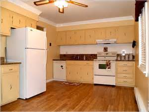 diy kitchen furniture diy plywood kitchen cabinets home design ideas