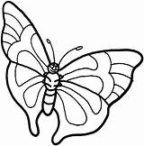 Butterfly Coloring Printables sketch template