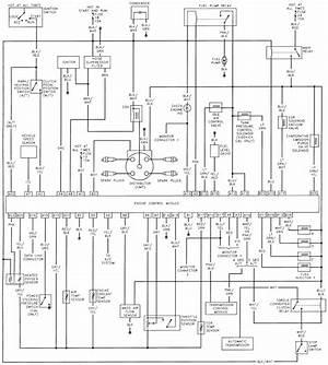1994 Suzuki Sidekick Wiring Diagram 25836 Netsonda Es